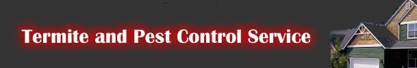 Termite Control & Pest Control Brisbane