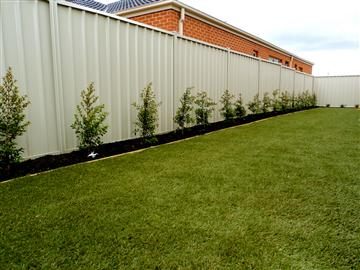 Colorbond Fencing, Timber Fences, Gates, Decking, Retaining Walls, Pergola & Patio Construction Melbourne