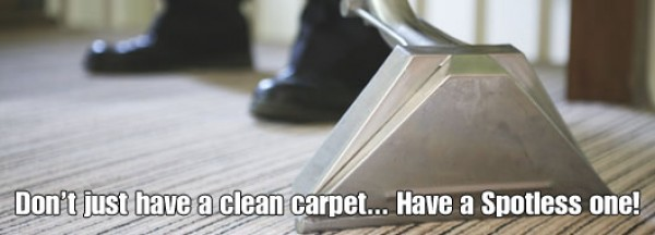 Carpet Cleaner Sydney Northern Beaches & North Shore