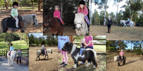 Pony Party & Pony Rides Sydney