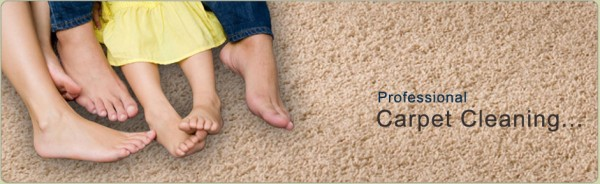 Carpet and Upholstery Cleaning Contact Details