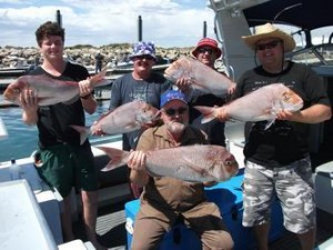 Half Day, Full Day & Overnight Fishing Charters Prices Adelaide