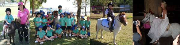 Pony Party & Pony Rides Gold Coast
