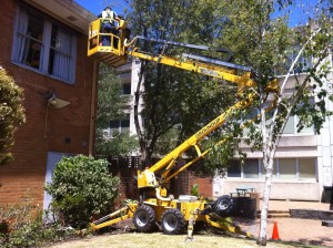 Cherry Picker Hire & Rental