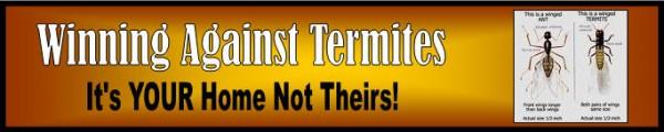 Termite Control, Pest & Building Inspections Brisbane