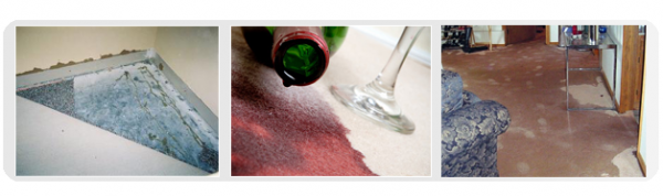 Emergency Flood Damage and Stained Carpet Cleaning & Drying