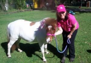 Hire a Pony for Kids Parties, Kindergartens & Preschools, Corporate & Special Events