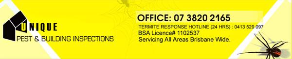 Termite Control Pest & Building Inspections Brisbane