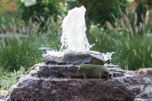 Awake Spring Water