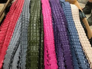 Crocodile Belt Colours